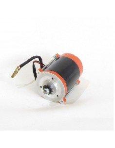 Motor electrico brushless 300W - Motosapollo.com