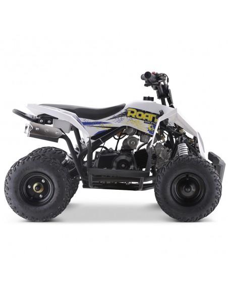 Miniquad 90cc ROAN Radix r6 - 20