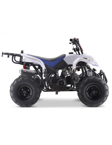 Mini Quad 110cc ROAN Predator PRO - 7