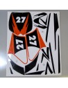 Adhesivos minicross roan 27 - Motosapollo.com