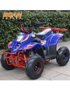 Mini Quad 110 Roan Raptor