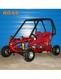 Buggy 110cc junior biplaza