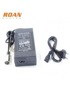 Cargador bateria 48V-2Ah macho