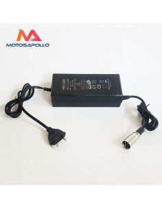 Cargador batería macho 60V - Motosapollo.com