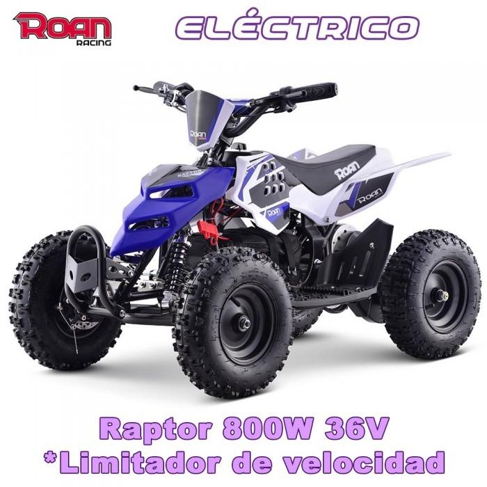 Miniquad electrico 800W Raptor R6 - Motosapollo.com