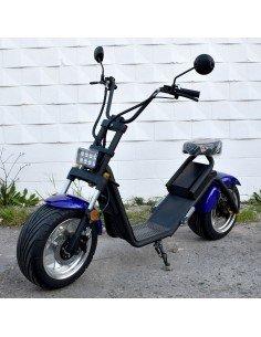 Citycoco roan fox 1200w 60V...