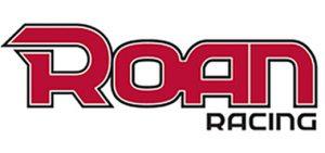 Nuevo logo ROAN