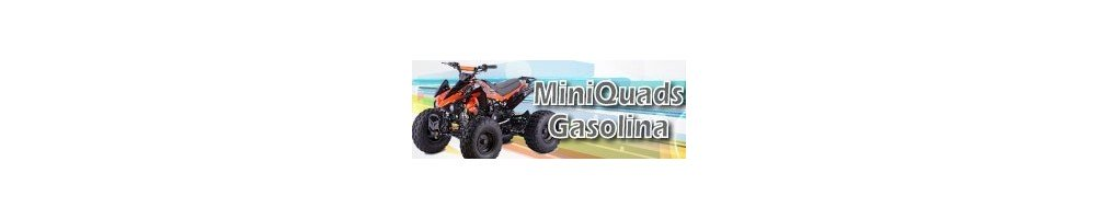 Mini Quads Gasolina